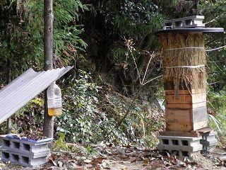 巣箱の防寒等
